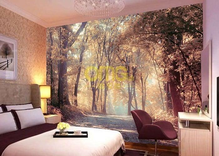 Autumn trees wallpaper at omgloh.com