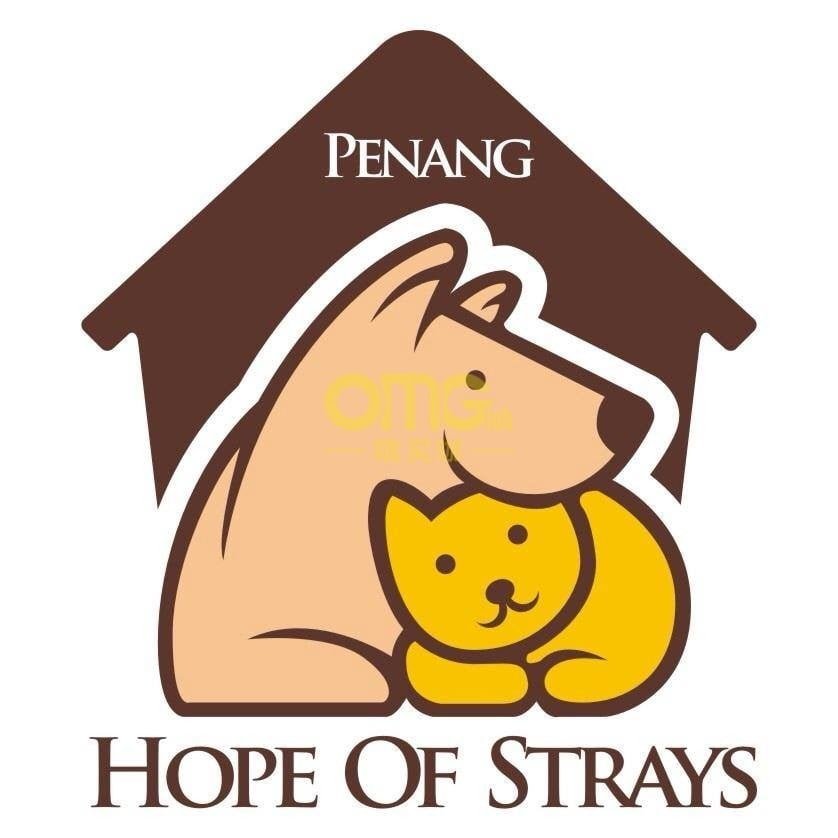 penang hope of strays 1 at omgloh.com
