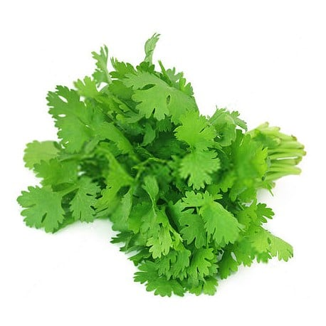 coriander leaves dried 250 gms at omgloh.com