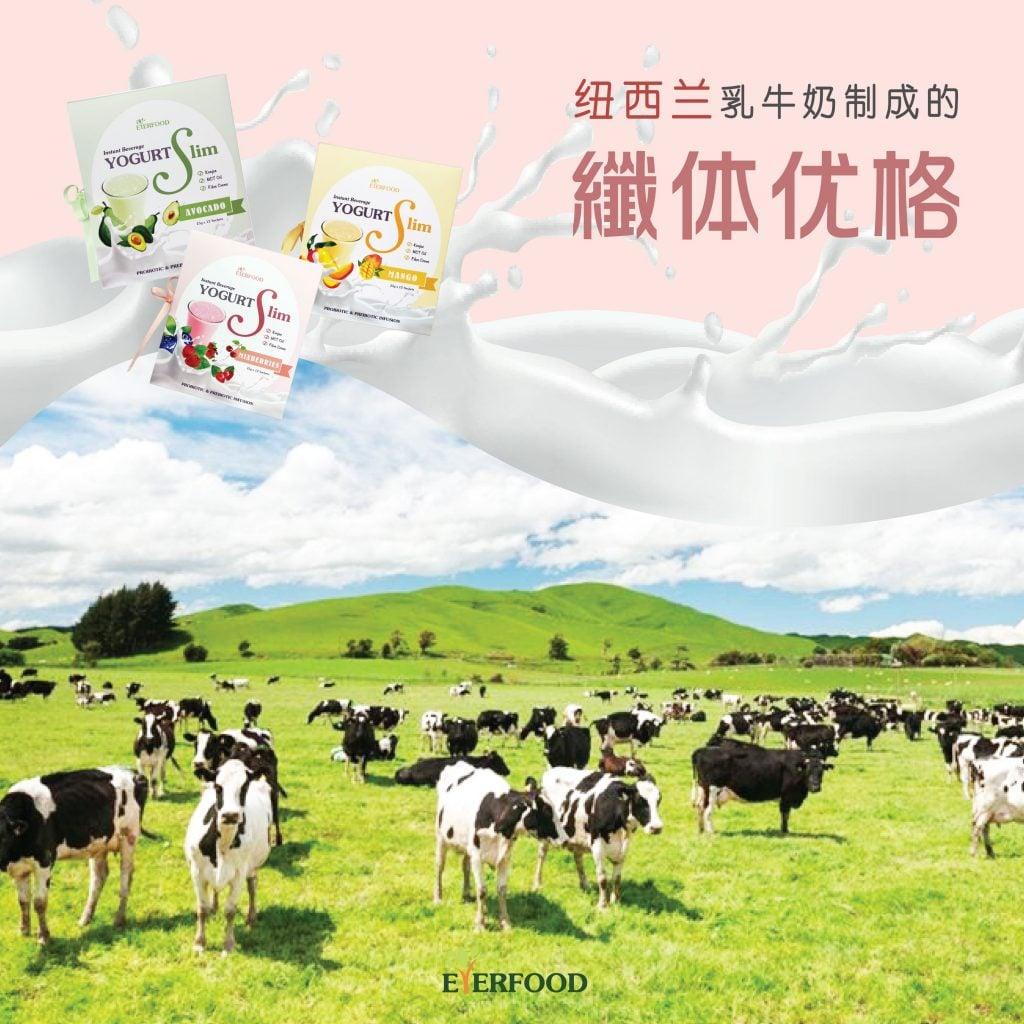 Yogurtslim fb ads7 1 at omgloh.com